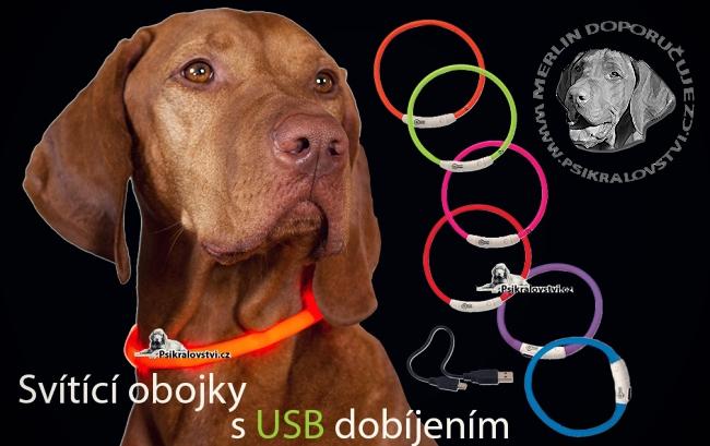 Svitici USB obojky pro psy Dog Fantasy