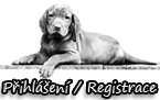 Button P�ihl�en�/Registrace