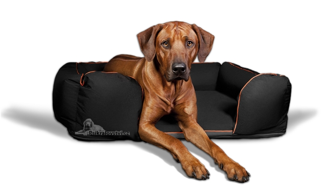 DOOOP Xtrem Lagoon pelíšek pro psa Komplet 120x80cm Černý - Kliknutím na obrázek zavřete